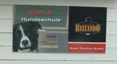 Bens Hundeschule, Hundeschule Sinzig, Hunde Training